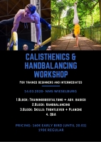 CALISTHENICS & HANDBALANCING WORKSHOP